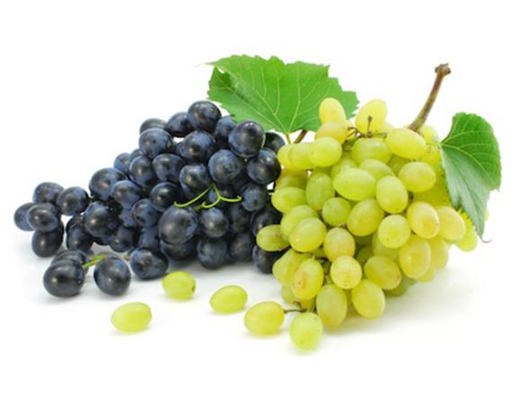 Table grapes apulia excellence agrifood selection - Uva da tavola bianca ...